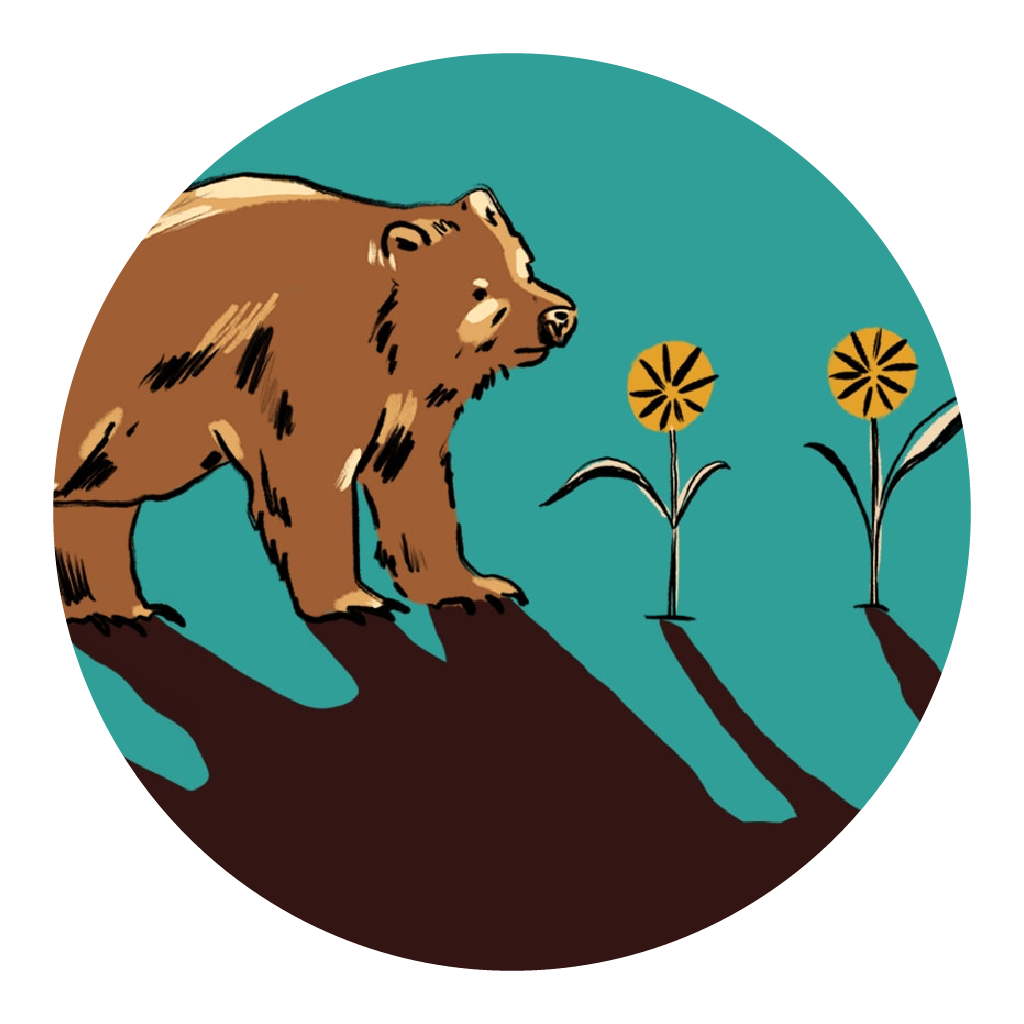 Undercurrent: Bear 148   explores what it's like for a grizzly bear trying to navigate this complex world we've built. In this series, you'll hear from people living in the Bow Valley — artists, biologists, experts in human-wildlife conflict and government officials.