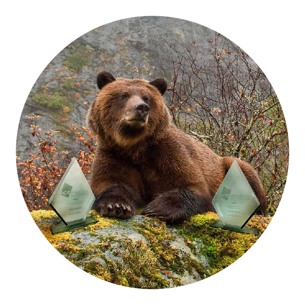 The Canadian Public Relations Society    awarded    the #SaveBCBears campaign gold in two categories: Marketing Communications Campaign of the Year and Best Digital Communications Campaign of the Year.