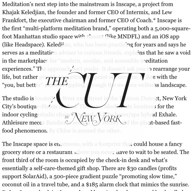 The Cut New York Mag.png