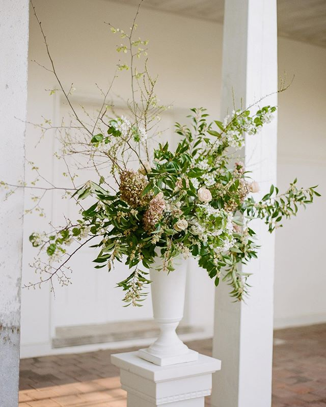 Sometimes Tuesdays can feel a little wild if ya know what I mean! 📷 @abraham_rowe_photography . . . . #florencealflorist #alabamawedding #florencewedding #floraldesign #floral #luxuryfloraldesign #flowergram #southernwedding #floristreview #fineartflorist #floristofinstagram #flowersofinstagram #weddingflowers #flowerlove #flôridesigns #flôri #floralfix #fineartbride #southernliving #oncewed #floraldesign #floralsonfilm #film #filmphotography #filmwedding #weddingfilm