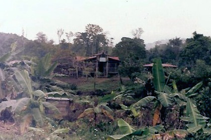 Hmong village Cacao, French Guiana