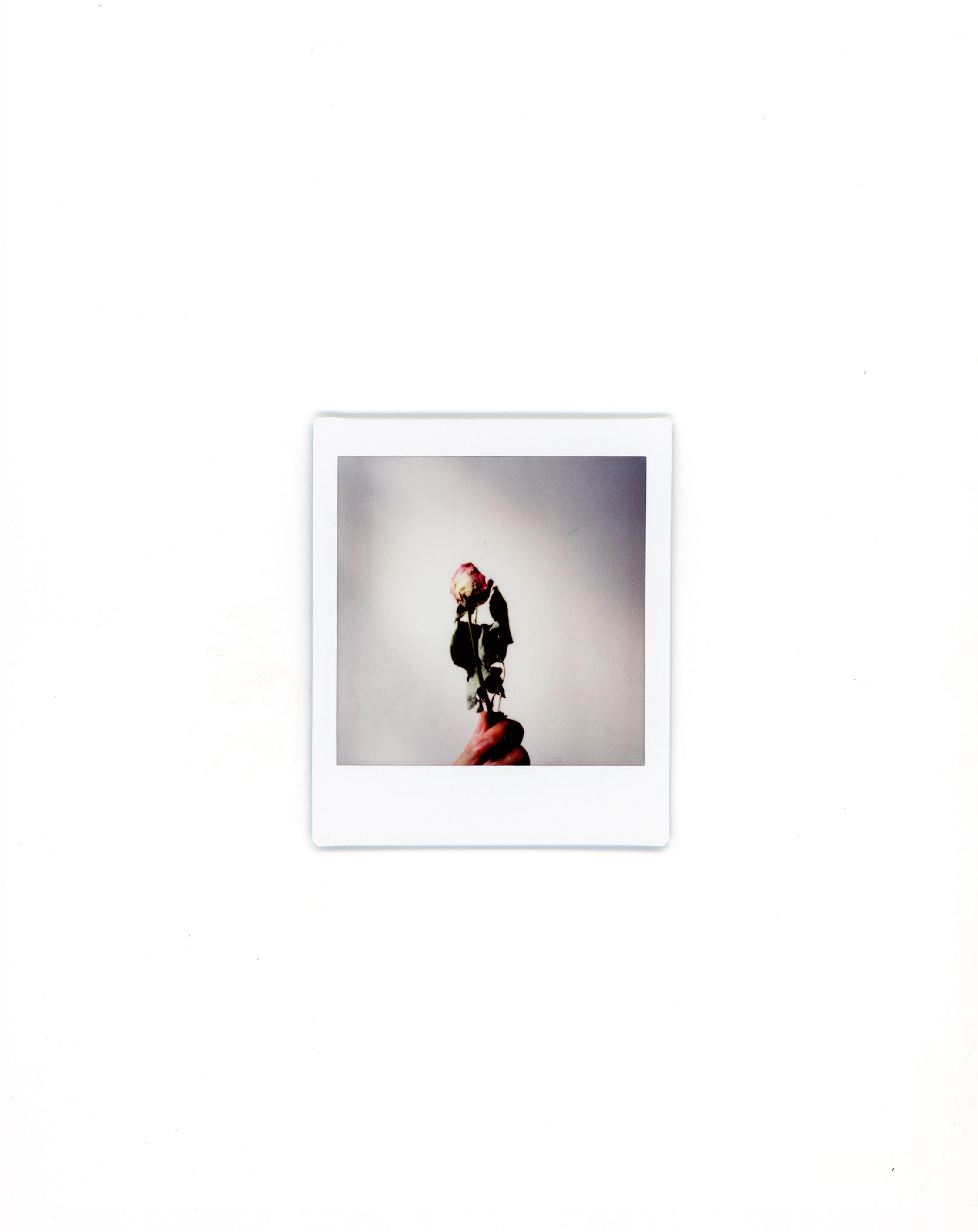 polaroids-7.jpg