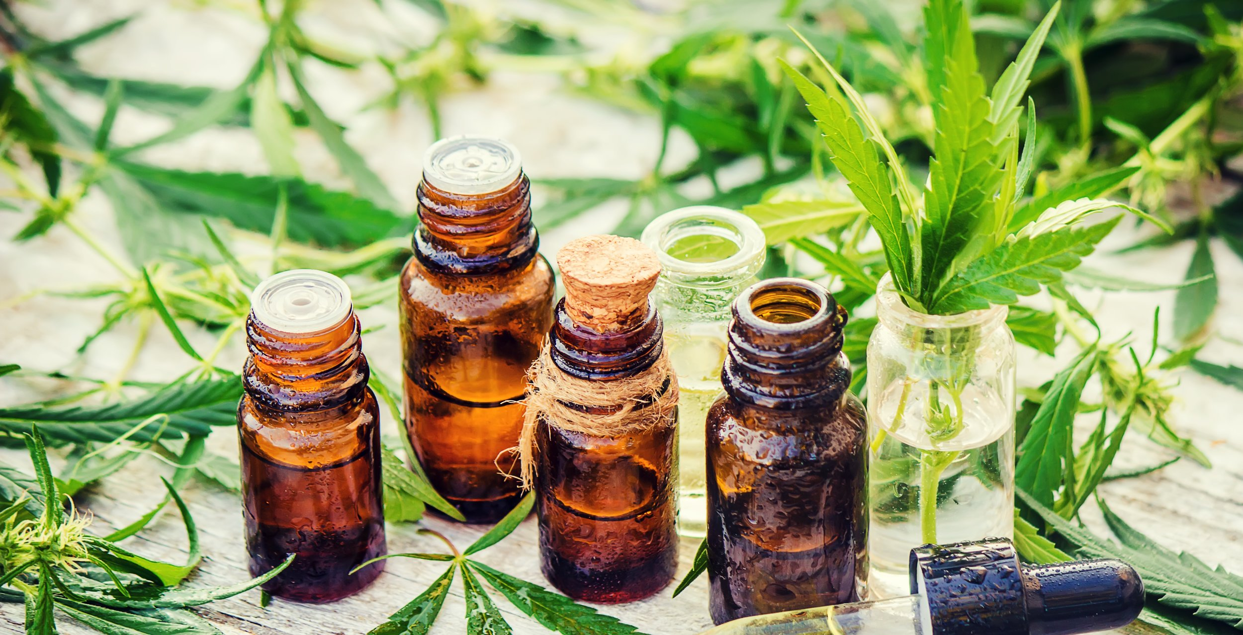 cannabis-oils.jpg