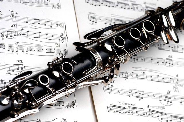 Click here to learn more about Woodwind Lessons…