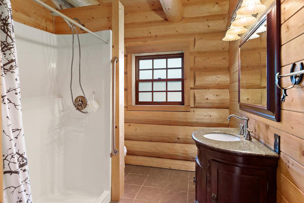 Guest bath on the main level...spacious & stylish.