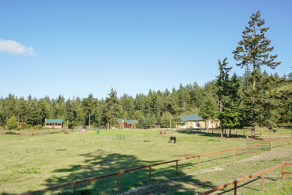 Fenced pasture & fields...with mini orchard, mature trees, and deep private well....ready to be a working farm, or simply an income producing property in an amazing setting...