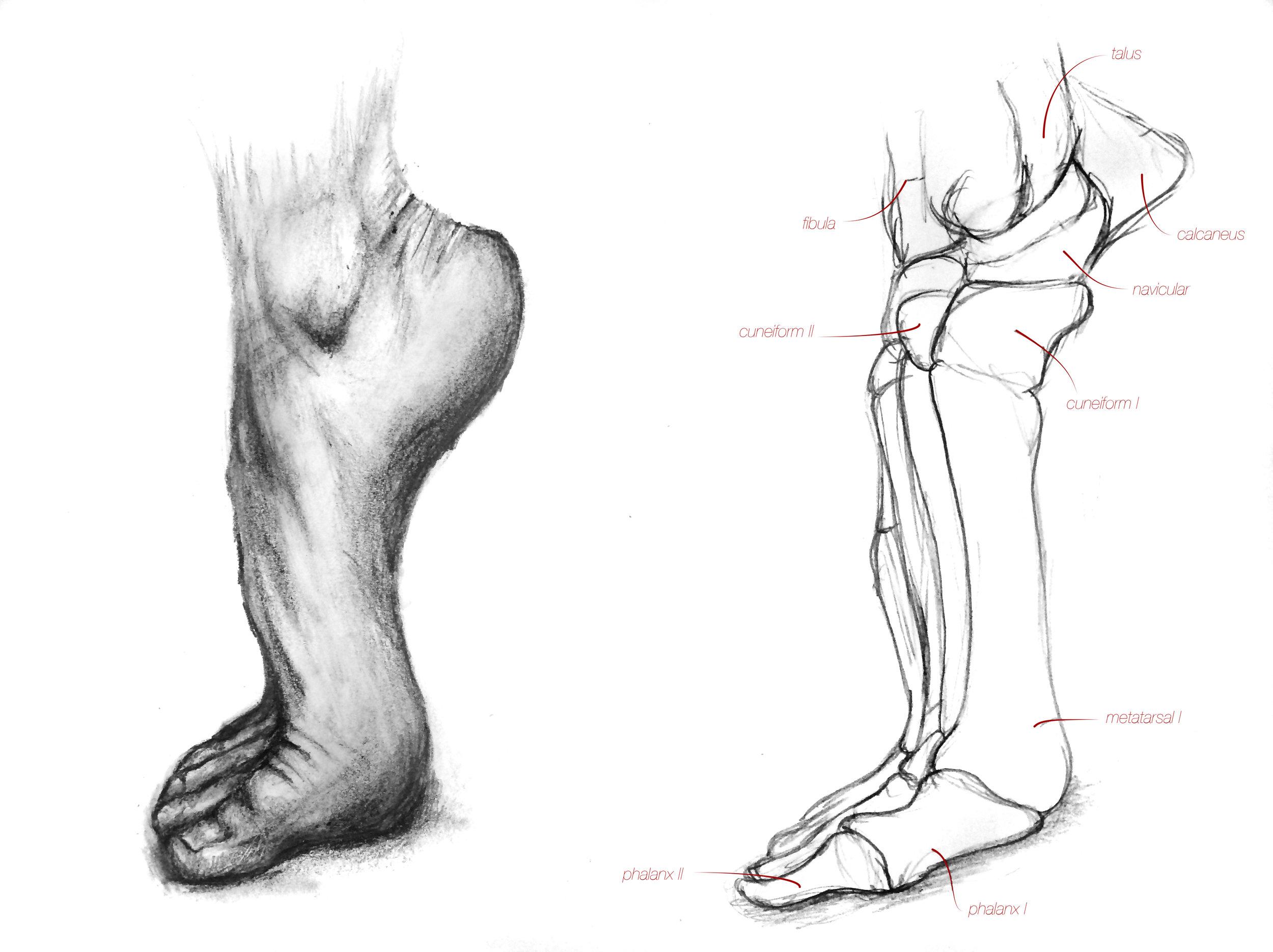 feet1writing.jpg