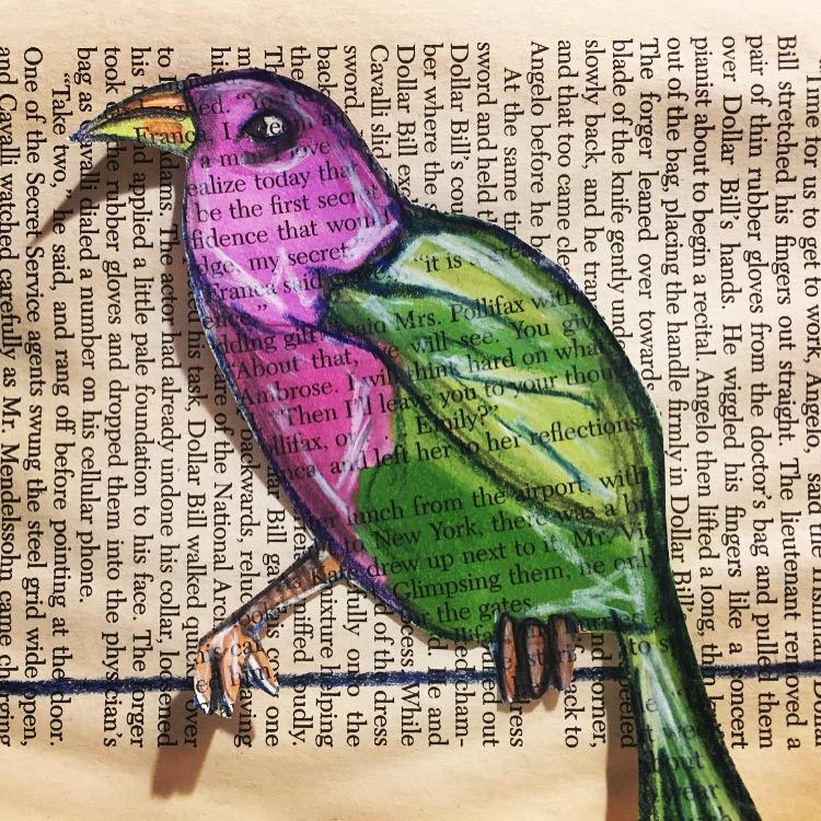 SOD book bird.JPG