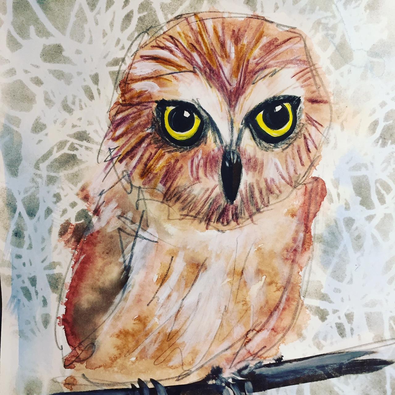 SOD-owl.JPG