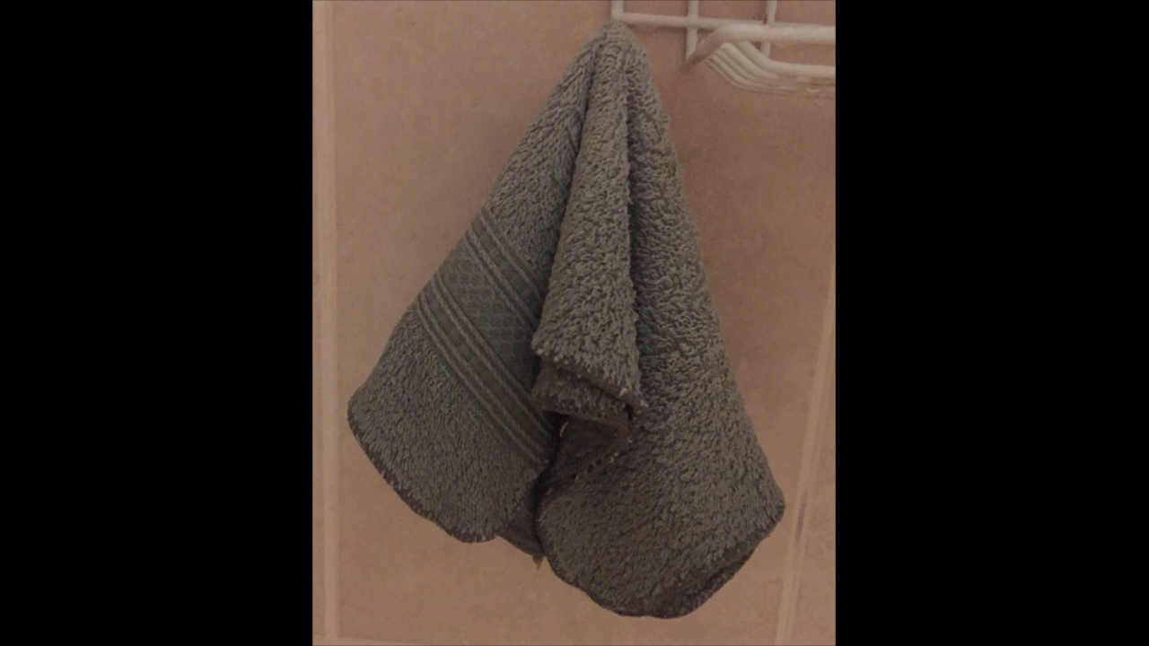 SOD-ginzee towel.PNG