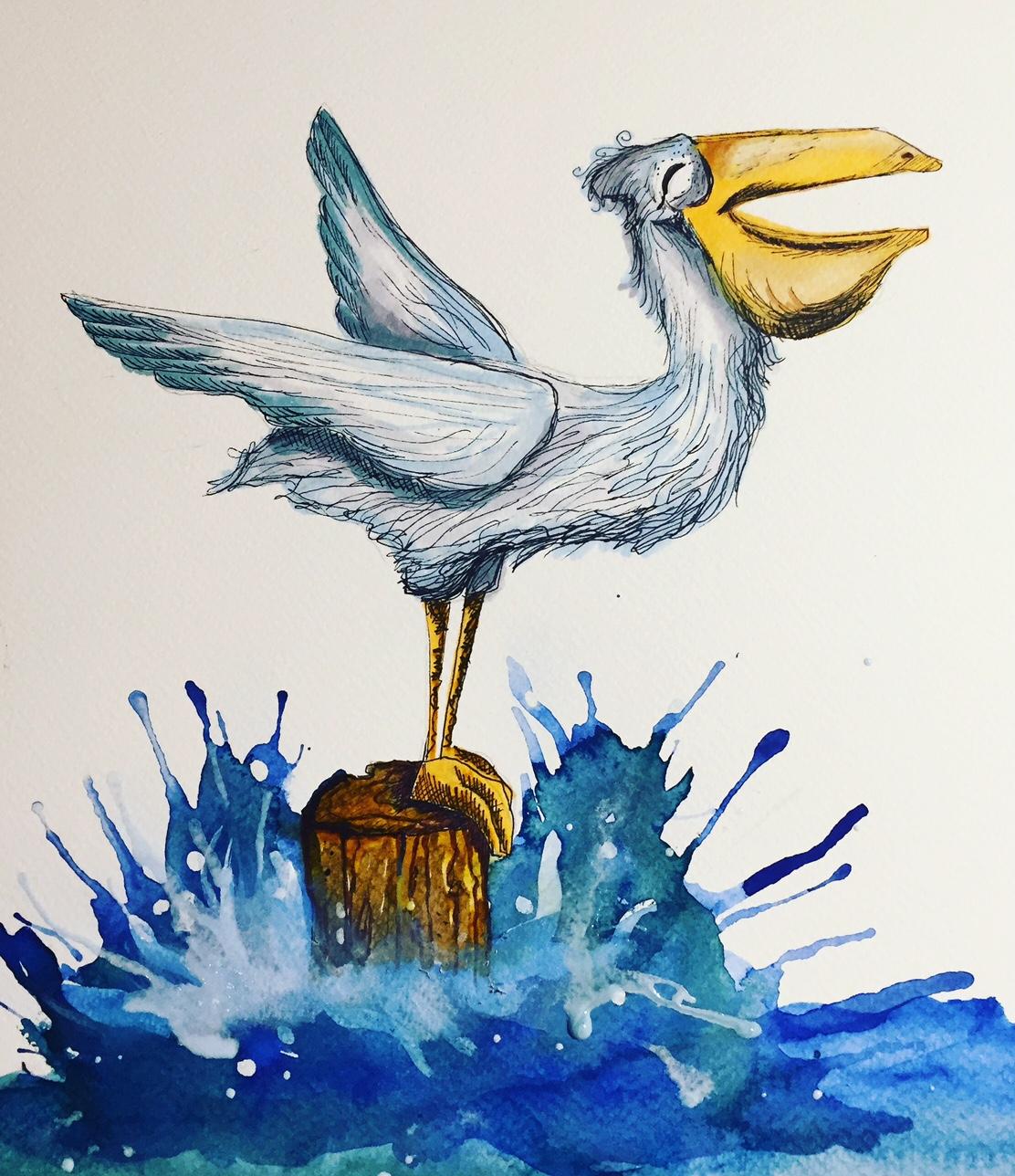 SOD Pelican.JPG