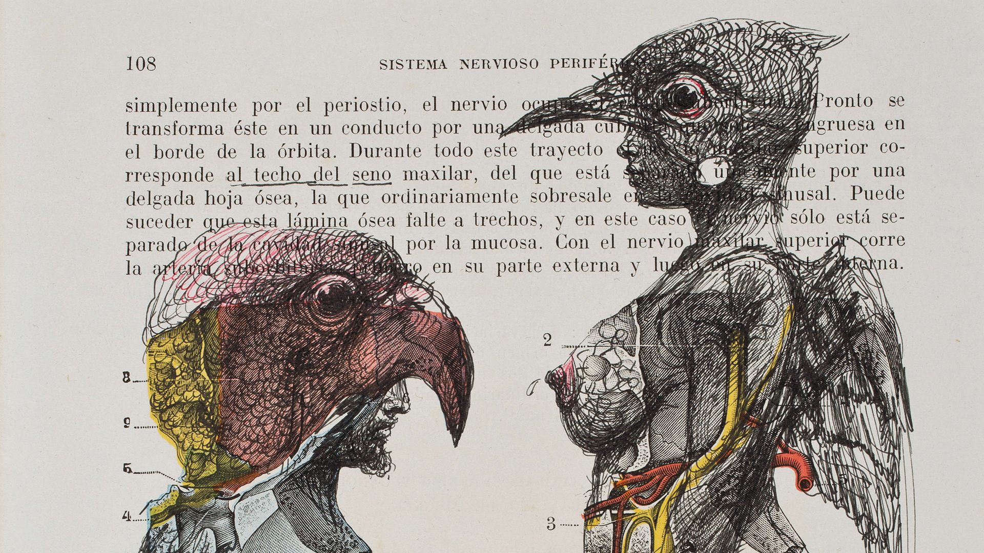 Roberto Fabelo (Cuba, b. 1951), Al techo del seno / At the   Breast's Celling  , 2013 Mixed media on paper. 6 1/2 x 9 3/4 in.Courtesy of the artist.