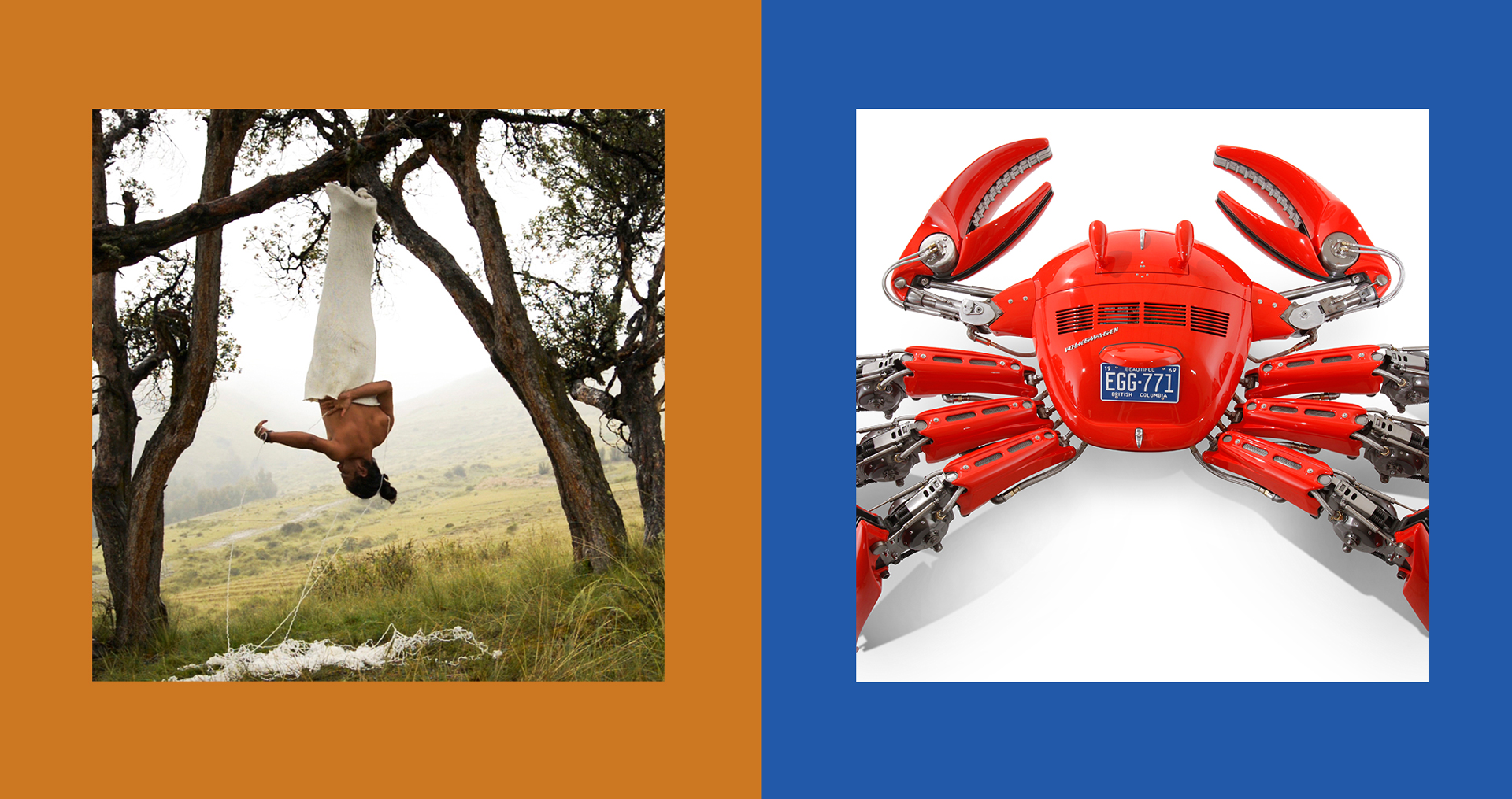 Left: Antonio Paucar (Peru, b. 1973), Suspended from a Queña Tree / Suspendido en un Queñua, 2014. HD-Video 27 min. Courtesy of the artist and Gallery Barbara Thumm, Berlin. Right: Cristian Castro (Argentina, b. 1971), EGG-771, 2008. Recycled materials, fiberglass, steel.Serial # 006. Courtesy of the artist.
