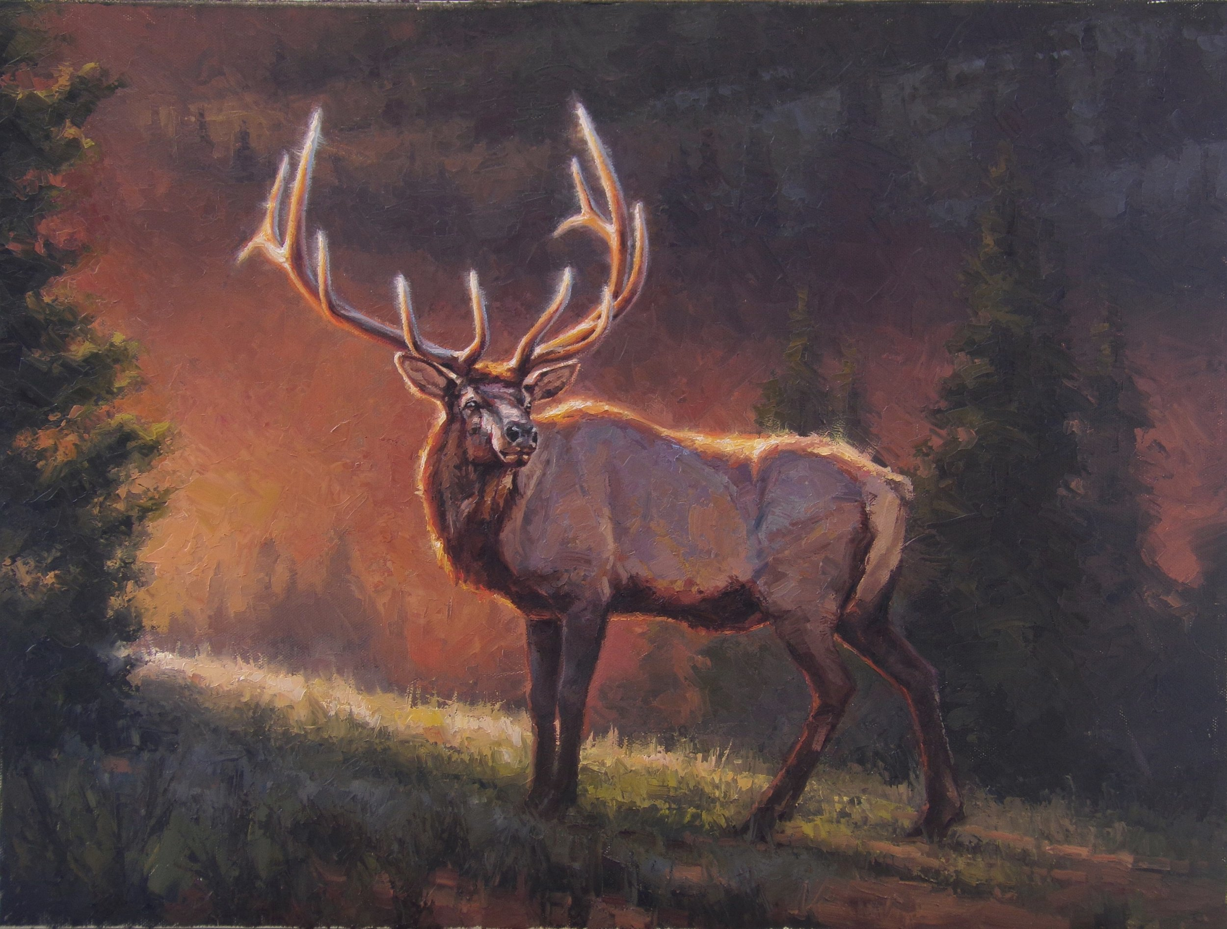 """Colorado Sunset"" - 18x24"" oil on canvas"