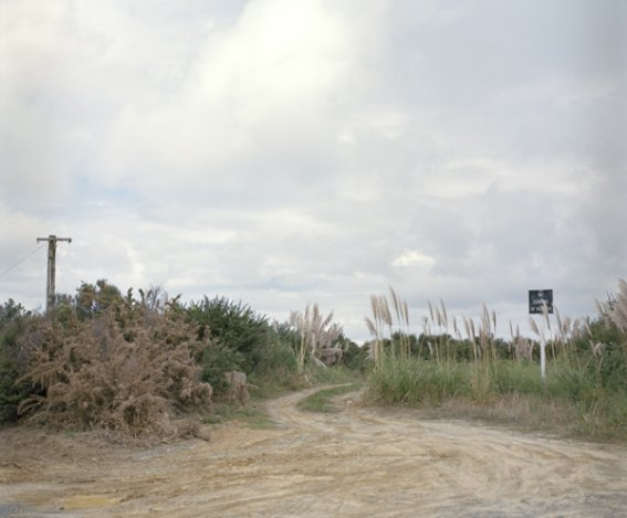 Carolin Casey: 'No dumping of rubbish', 2009