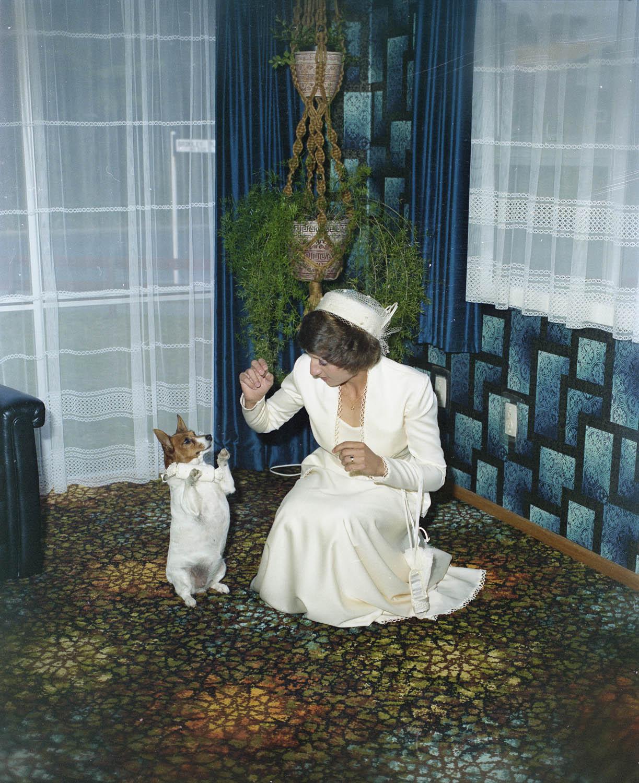 Bernard Woods Studio, Terrill, Wedding (1981), collection of Puke Ariki (WD.046149).