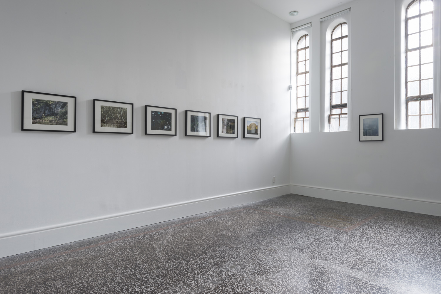 Real Pictures: Imaging XX installation, Gus Fisher Gallery, Auckland, June 2017. Jenny Tomlin.