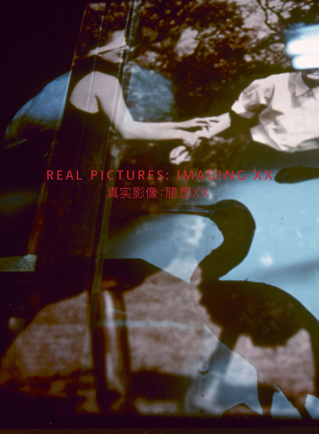 Title banner for the Pingyao version of  Real Pictures: Imaging XX. Design by Fiona Lascelles