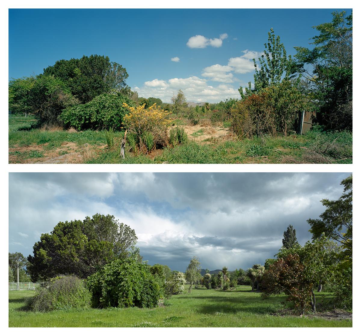 Keller St, Avonside, 2014 and 2016. Towards the Port Hills.