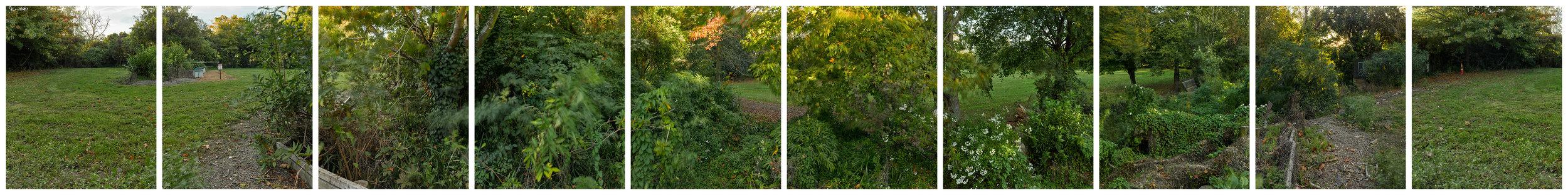 Banks Avenue, Richmond/Avonside, 360 degree panorama.