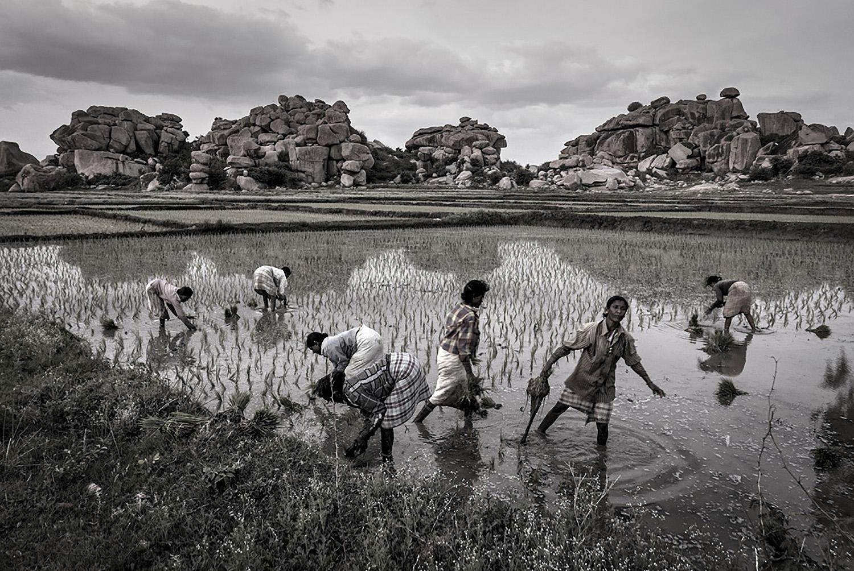 Cai Huansong  Hassan, India , 2015