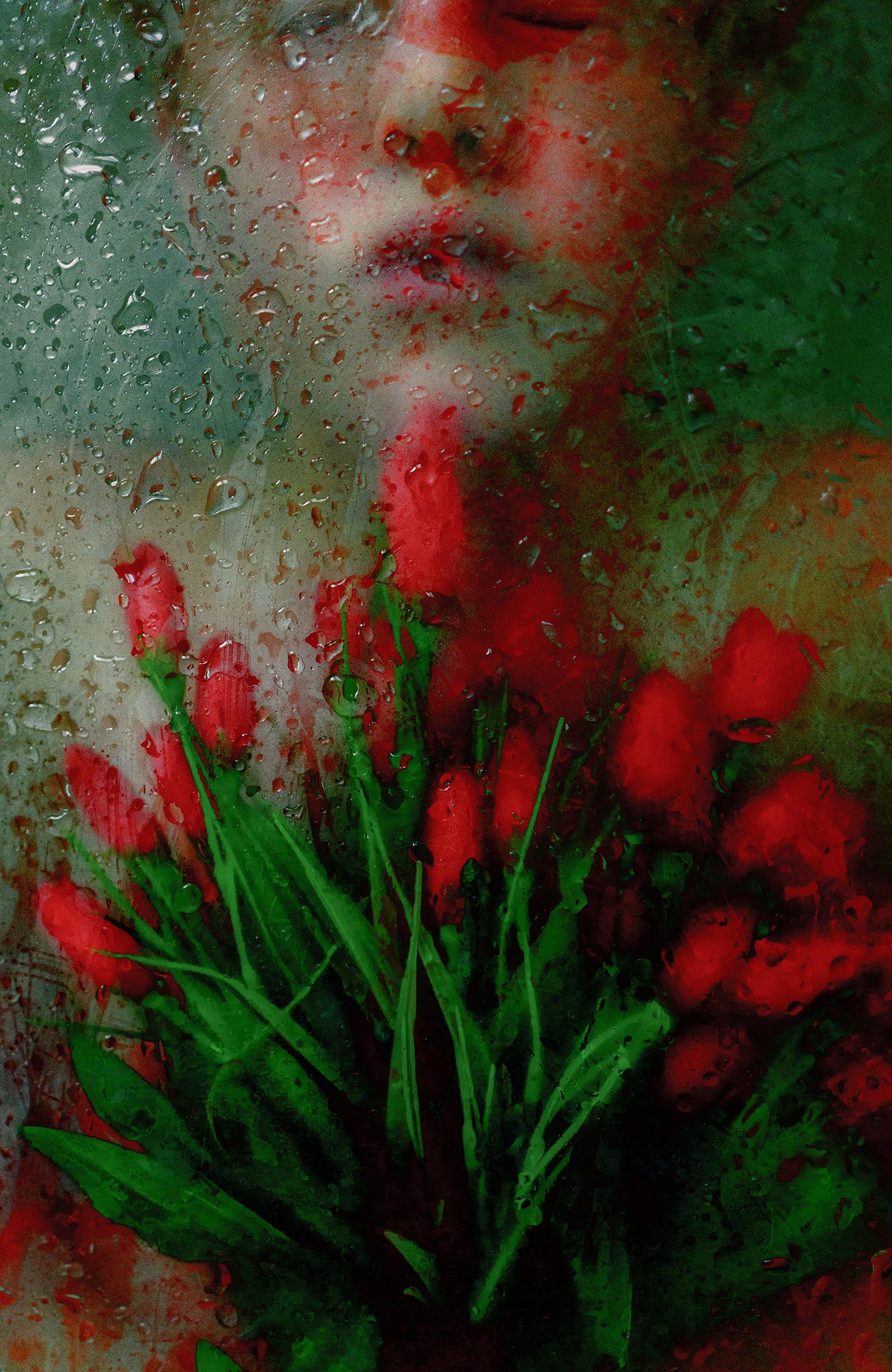 Lara Gilks,  Flourish