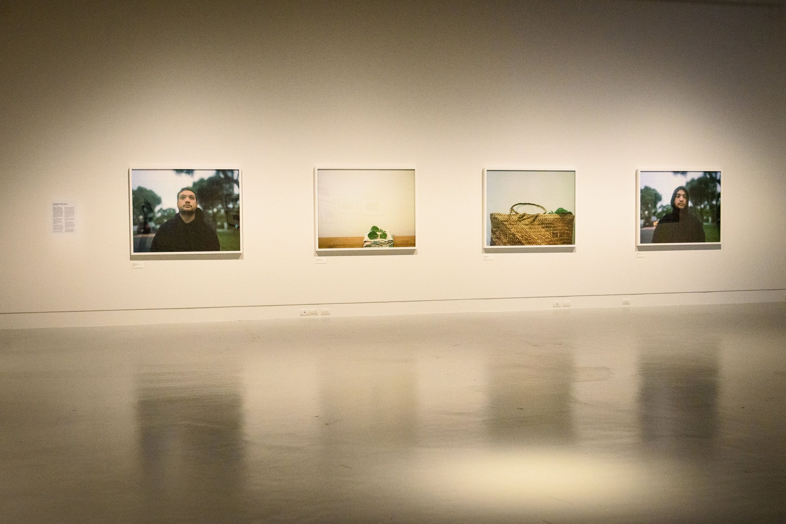 Ngahuia Harrison, installation view. Photo, Elias Rodriguez.