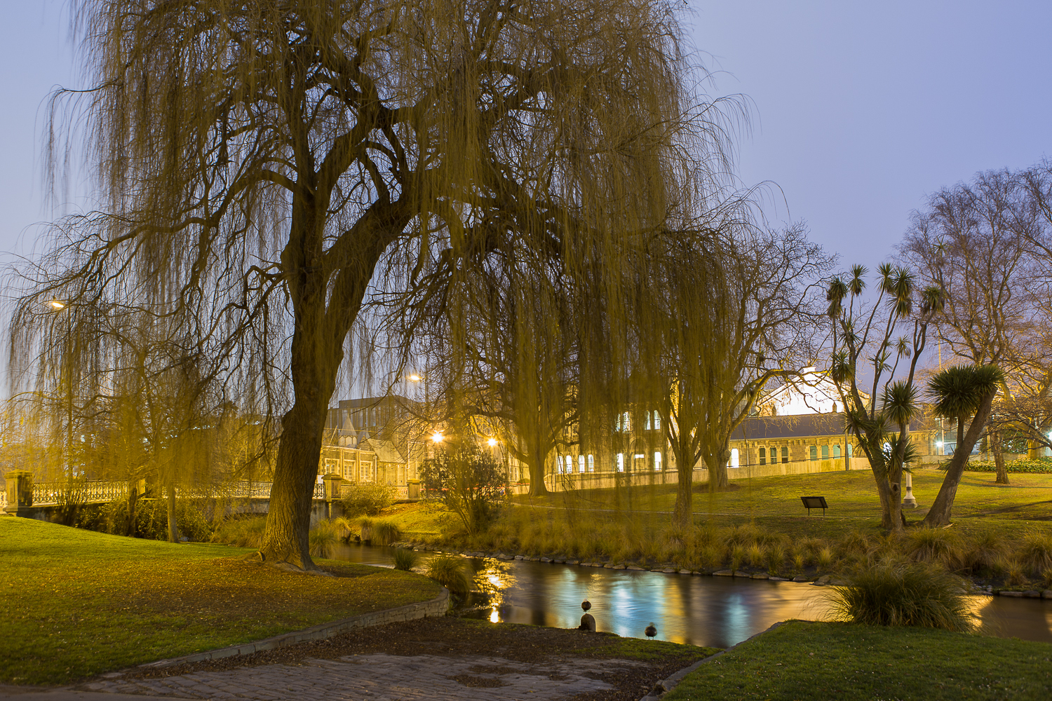 Arabella Spoors,  The Weeping Willows of Victoria Square, Puari Pā, Bloodlines