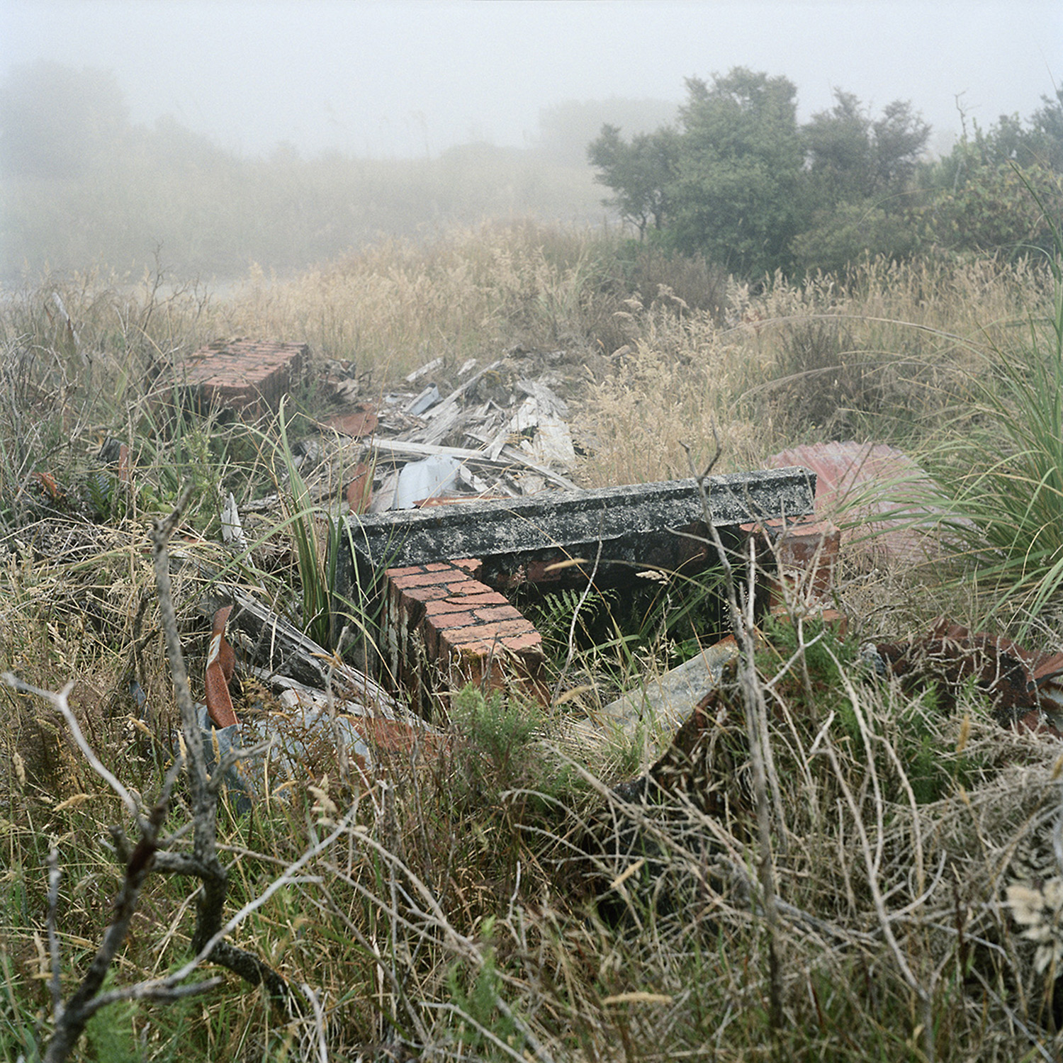 Caroline McQuarrie,  Remains of private residence,  Denniston, January 2013, from  No Town