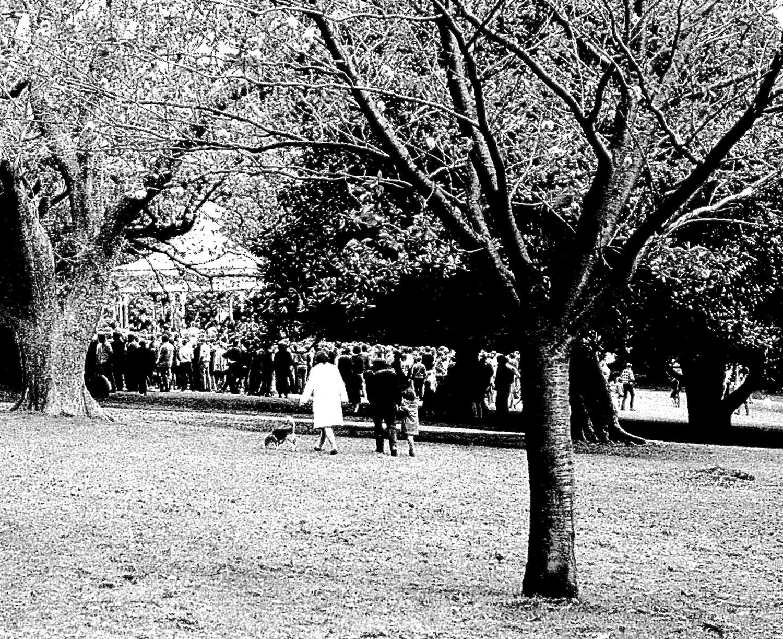 """""""Jumping Sunday"""", Albert Park, Auckland, 1969"""
