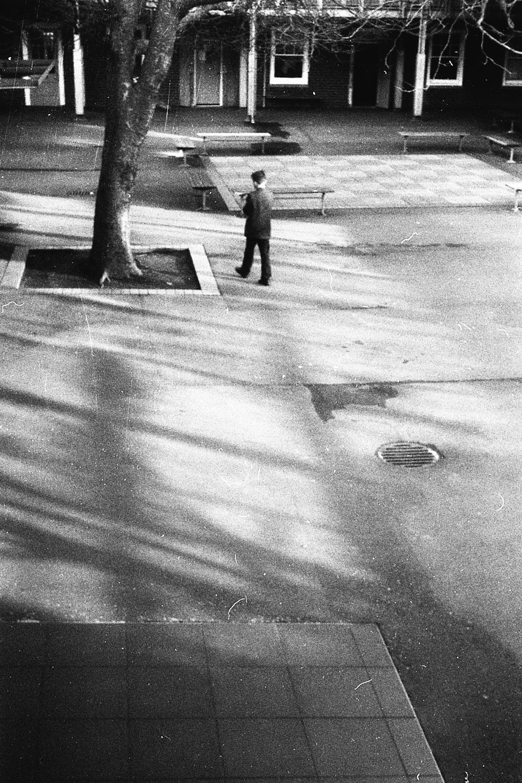 Boy walking across the Quad, 2017