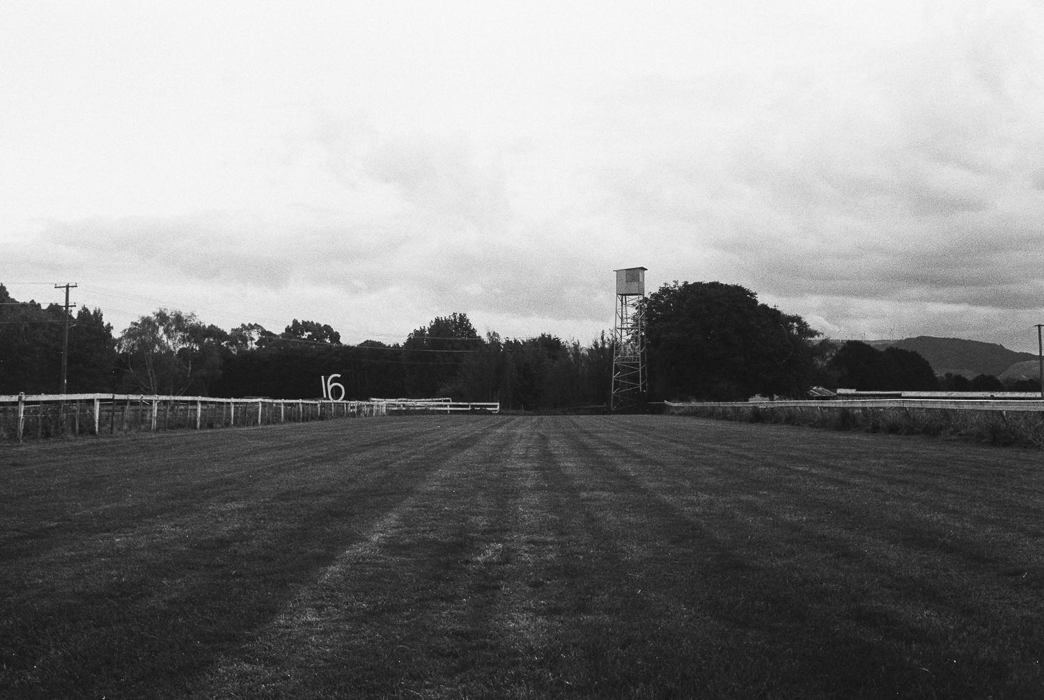 1600 metres start, Woodville Racecourse, February 2019