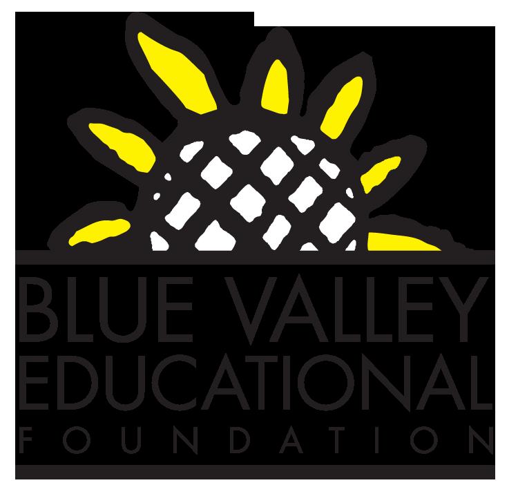 BVEF Logo no tag.png