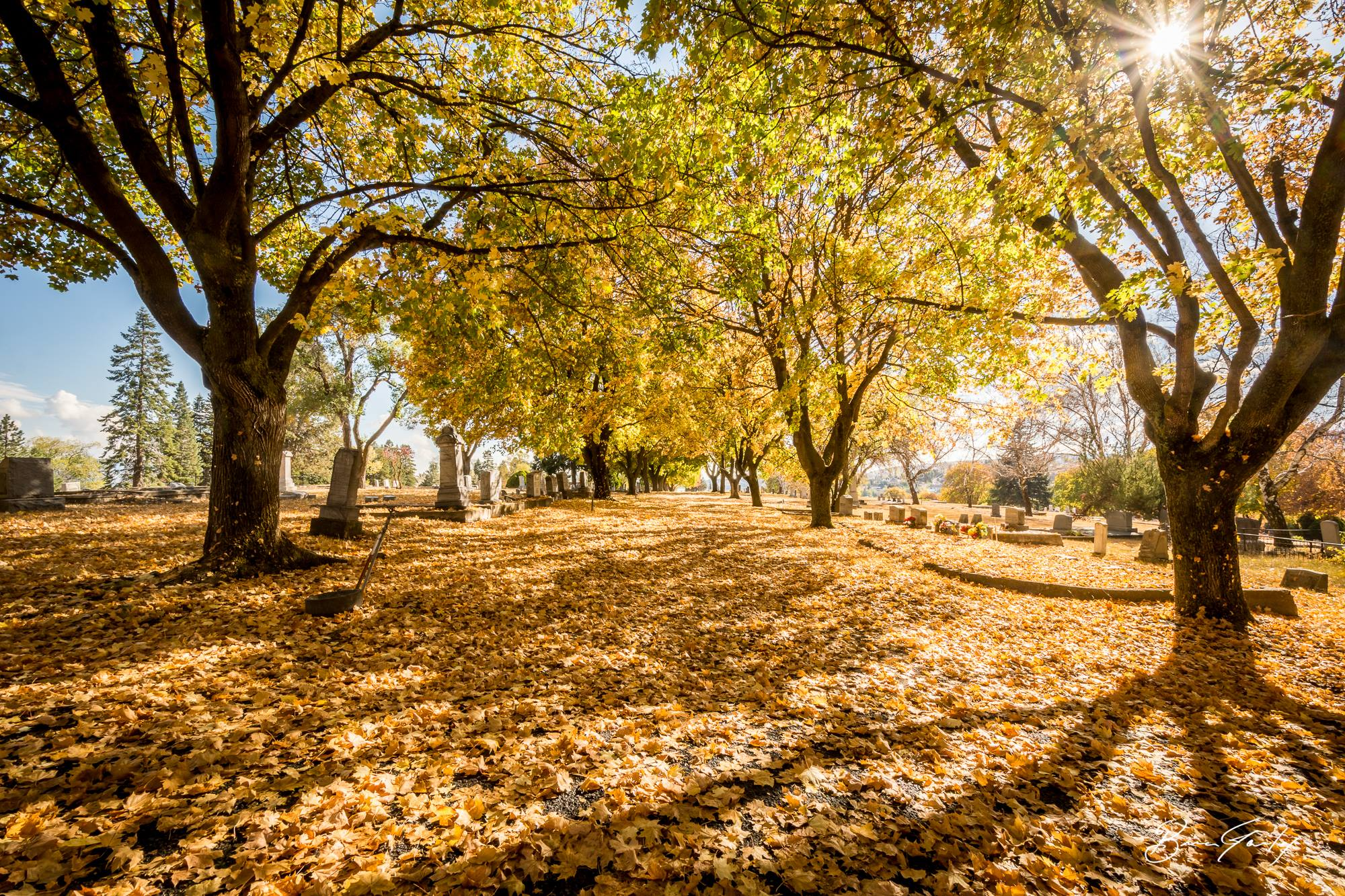 Fall Colors at the Linkville Cemetery - Image: Brian Gailey