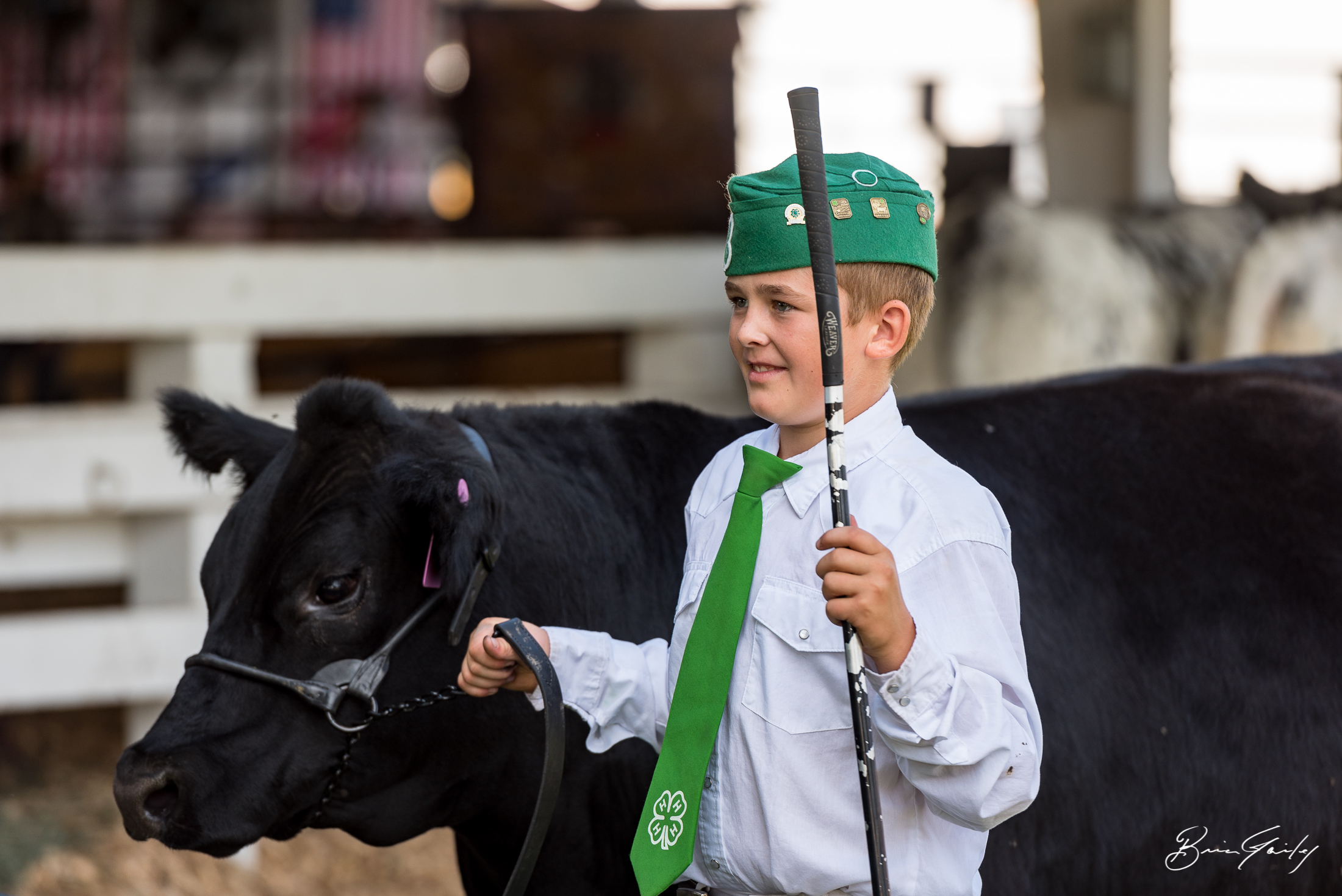 This young 4-H Member just shown his steer to a wonderful Reserve Champion result.  Image:  Brian Gailey  Tulelake Butte Valley Fair 2017
