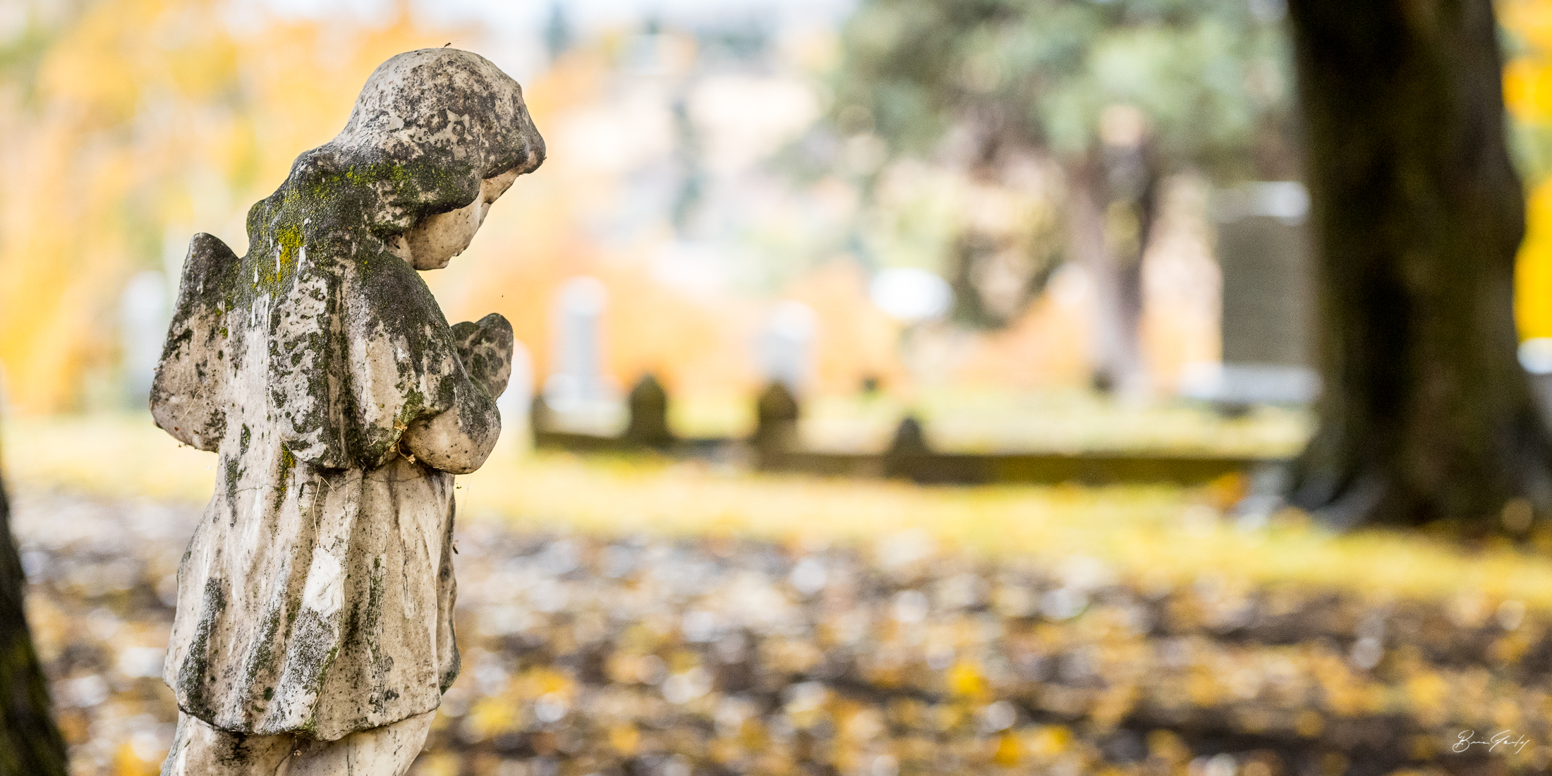 The angel is watching over the Linkville Cemetery. Image: Brian Gailey