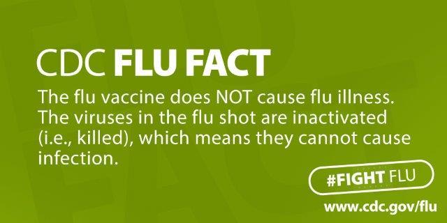 CDC Flu Fact.jpg