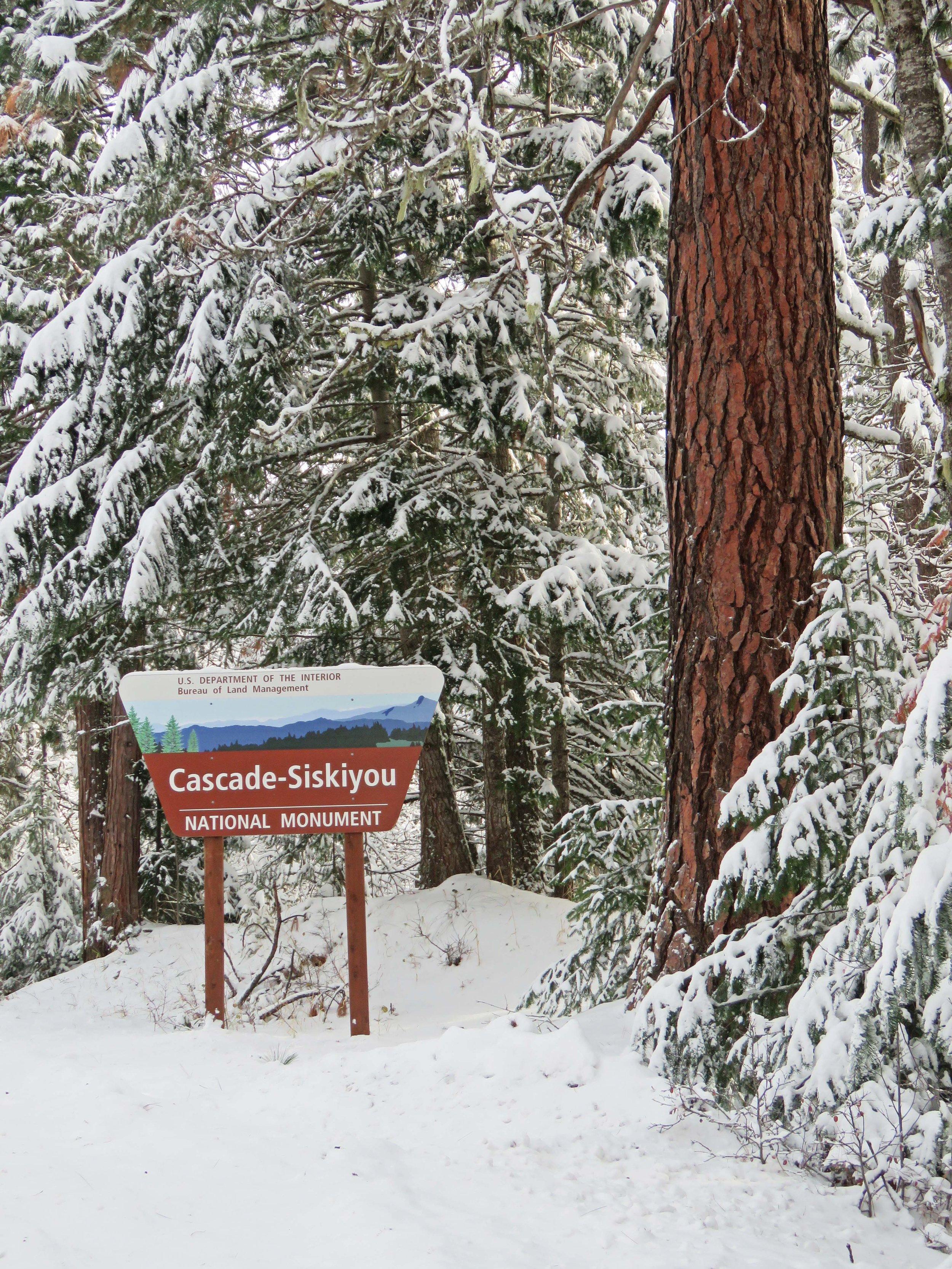 Snow at Cascade-Siskiyou National Monument (BLM  Flickr )