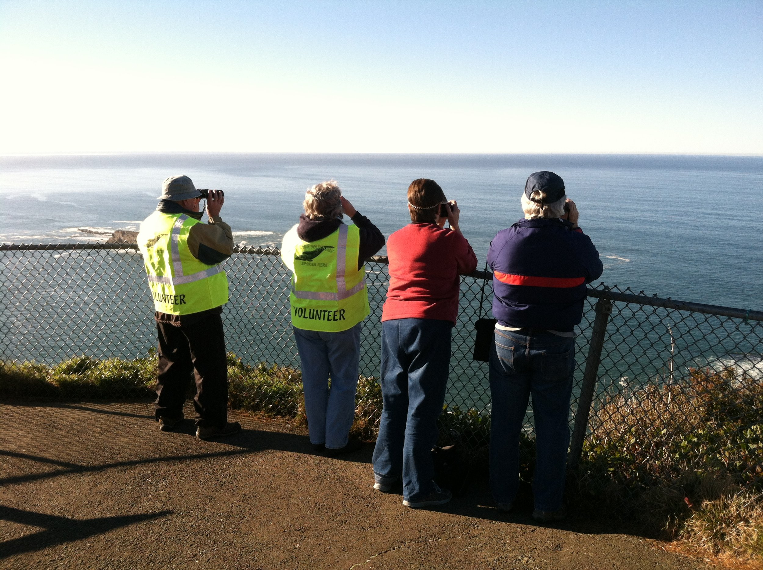 Volunteers stationed at 24 sites along Oregon Coast help with whale watching tips and facts. (Oregon State Parks)