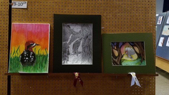 Youth Art Contest exhibit at the 2018 Winter Wings Festival. (Stephen Shunk)