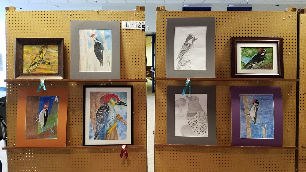 11th and 12th Grade entries from the 2018 Winter Wings Festival youth art contest.