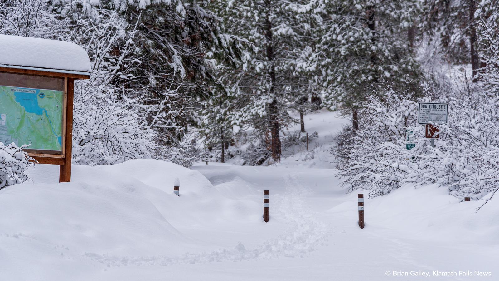 20190213-Snow-KFN-7838.jpg