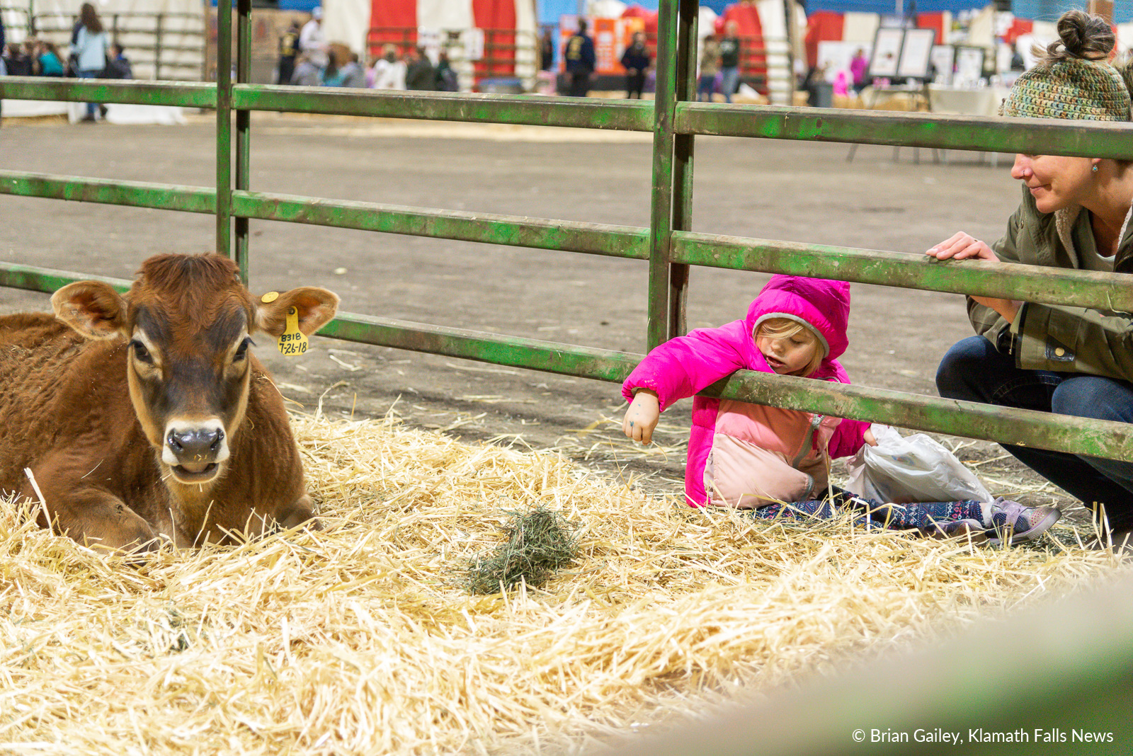 2019 Farm Expo. February 21, 2019. Image by Brian Gailey/Klamath Falls News.