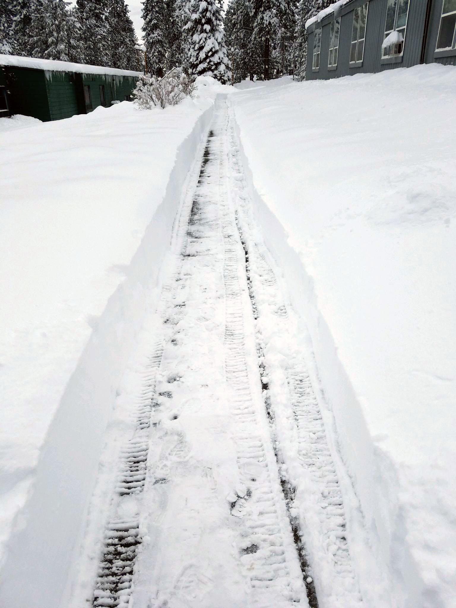 snow gilchrist 5.jpg