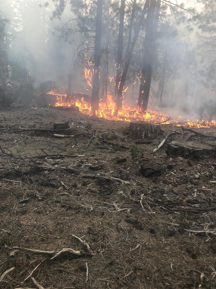 Bray Mill Fire, USFS