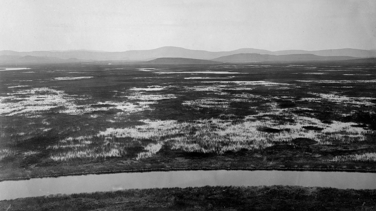 Lower Klamath Lake, shown in this photo, was dramatically altered by human development in the early 1900s.