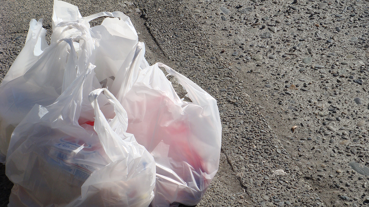 Single use plastic bags will soon be a thing of the past for Oregonians. (Image,  velkr0  Flickr)