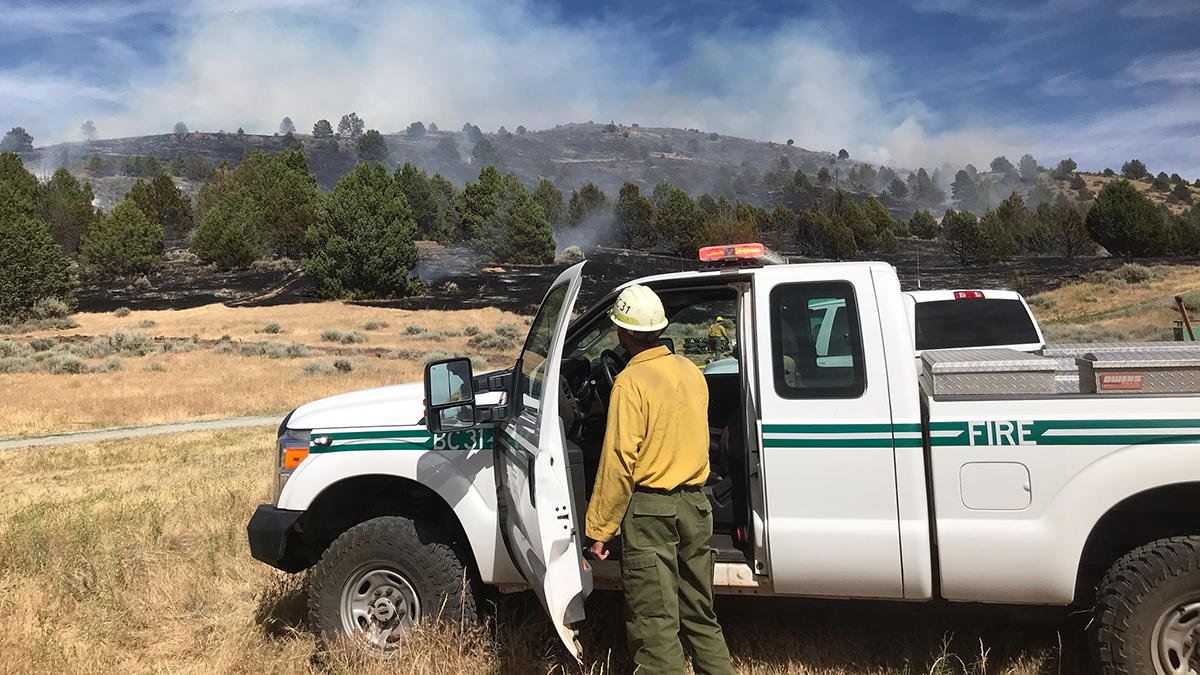 A firefighter observes the Goose 2 Fire. (Modoc National Forest)