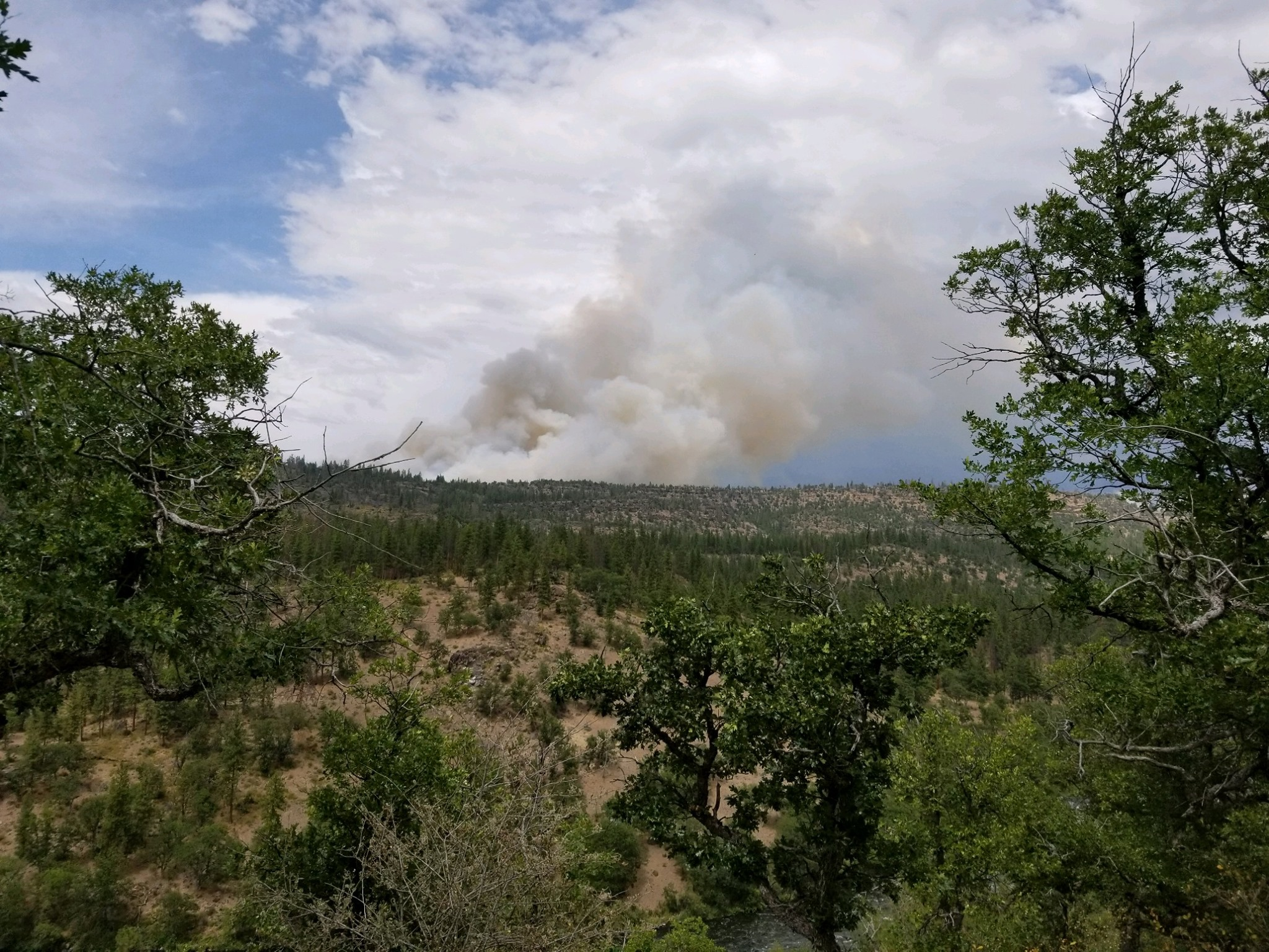 Ward Fire, 21 miles southwest of Klamath Falls. 1329 acres with 17% containment. ( Ward Fire Facebook )