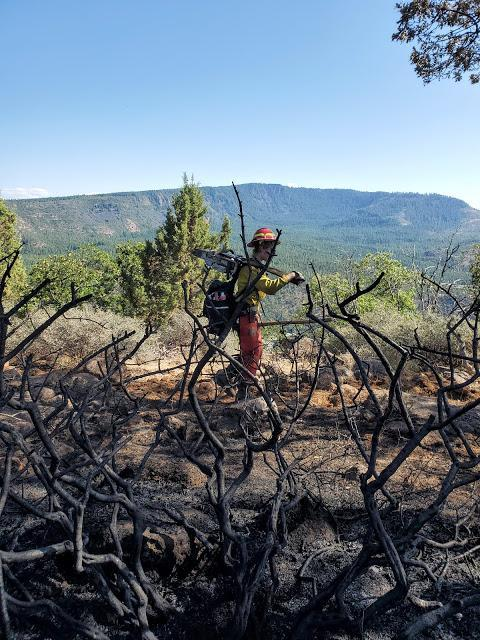 Sawyer for a Greyback crew working along the rim of the Klamath River removing snags and hazard trees near the fire line. (Inciweb)